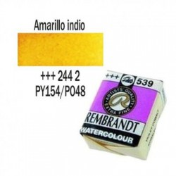 ACUA. REMBRANDT PAST. (244) AMARILLO INDIO