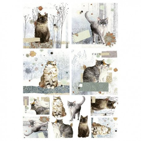 Papel de Arroz 35x50 cm DEC319 Cats